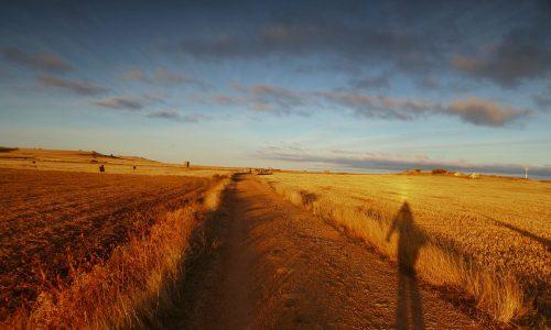 """""""Quando si viaggia"""", una citazione da """"Il Cammino di Santiago"""" di Coelho"""