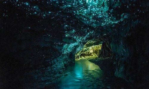 Le Waitomo Caves: una porzione di cielo nel sottosuolo della Nuova Zelanda